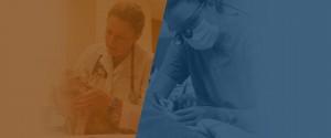 Neurology & Neurosurgery cover image