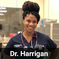 Dr. Harrigan