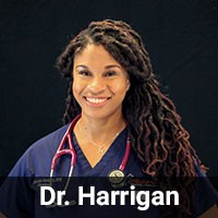 Dr. Harrigan - MissionVet Emergency Veterinarian