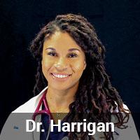 Dr. Harrigan - MissionVet Emergency Doctor